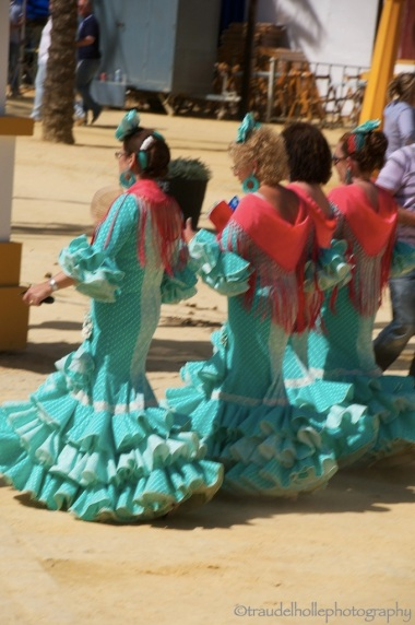 096 Flamenco_new